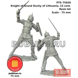 Рыцарь Великого Княжества Литовского, 15 век, PTS-75028