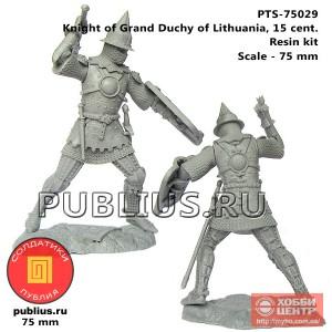 Рыцарь Великого Княжества Литовского, 15 век, PTS-75029