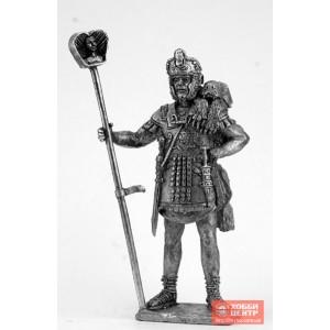 Знаменосец когорты охраны трибуна. Конец 1 века. DR-28